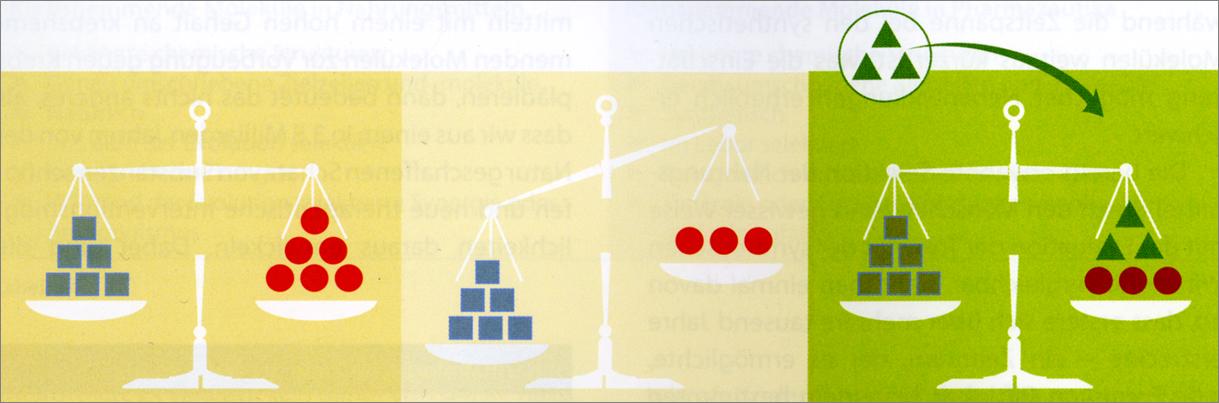 an kann Gesundheit vereinfacht als ein empfindliches Gleichgewicht definieren zwischen Faktoren, die Krankheiten auslösen und solchen, die Krankheiten verhindern (A). Arbeitshypothese nach Béliveau u.Gringras, 2007Bei einem Mangel an bestimmten physiologischen Stoffen entsteht ein Ungleichgewicht, das den Ausbruch von Krankheiten begünstigt (B). Wenn der Körper die fehlenden Substanzen aufnimmt, wird das für die Gesundheit notwendige Gleichgewicht wieder hergestellt (C).