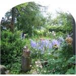 Garten Leitnervilla enzymatische Bodenstimulation