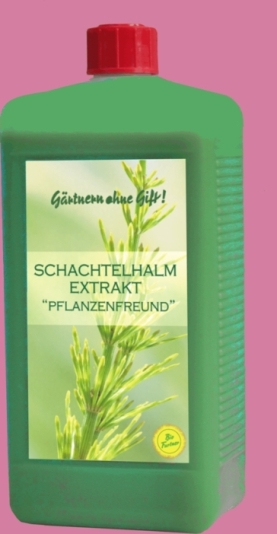 Schachtelhalmextrakt-Pilzbekämfungsmittel gegen Mehltau-www.chitodent-vertrieb.de